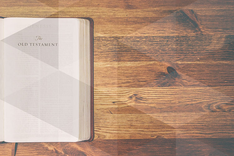 Old Testament Theology Paul House
